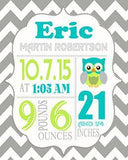 Baby Gift - Personalized Baby Boy Birth Announcement Print - Custom Owl Nursery Decor - Unframed PrintBaby ProductMuralMax Interiors