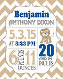 Chevron Birth Announcement Theme - Custom Lion Nursery Decor Collection - Unframed Print-B018GT4SZO - MuralMax Interiors