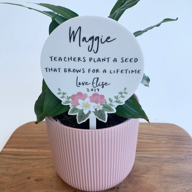 Teacher Planter Stem