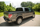 Roush Side Exit Performance Exhaust System For F-150 2011-14 | #421711 -  ROUSH® available at NEMESISUK.COM
