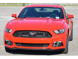 Ford US Spec GT Lower Front Grill for Mustang 2015-18 | #FR3Z-17K945-BA