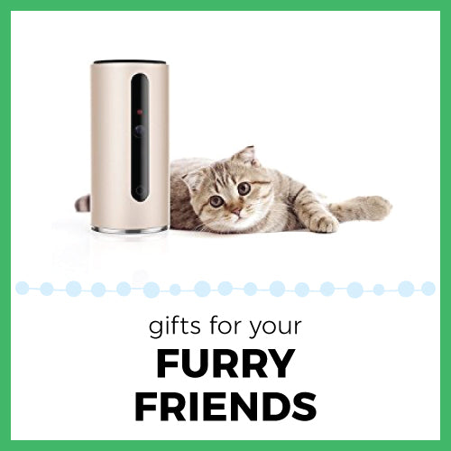 Gifts for your Furry Friends