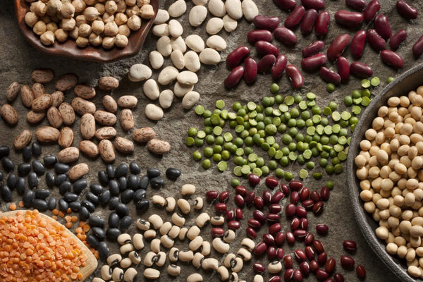Legumes beans peas dry importance of protein for hair growth toppik hair blog