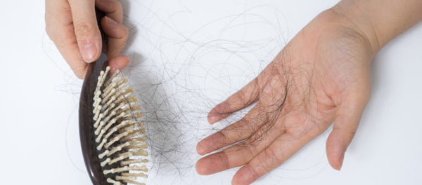 hairbrush-thinning-fallout-thinning-hand-hormonal-hair-loss
