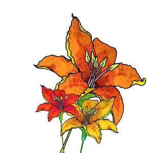 Lilium Bulbiferum Greetings Card 14x14cm (blank inside) - On the Wall Art Print Posters & Gifts