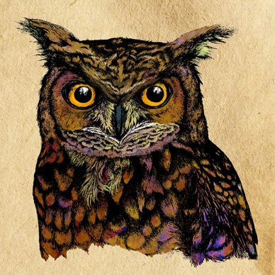 Great Horned Owl Greetings Card 14x14cm (blank inside) - On the Wall Art Print Posters & Gifts