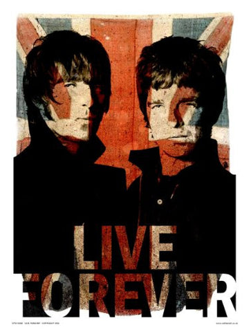 Oasis Liam and Noel Live forever Art Print Poster by Wig (OTW50) - On the Wall Art Print Posters & Gifts