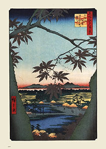 Maple Trees At Mama Hiroshige 70x50cm Art Print - On the Wall Art Print Posters & Gifts