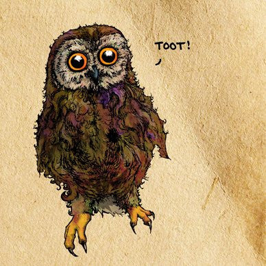 "Little Owl - ""Toot!"" Greetings Card 14x14cm (blank inside) - On the Wall Art Print Posters & Gifts"