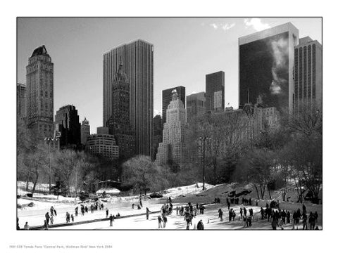 New York City Central Park Photographic Art Print Poster PDP 028 - On the Wall Art Print Posters & Gifts