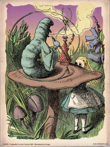 Alice in Wonderland The Caterpillar Vintage Art Print Poster 40x30cm (PDP 074) - On the Wall Art Print Posters & Gifts