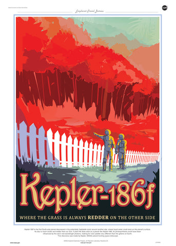 Kepler 186f, Space Travel, Tourism NASA, Solar System, Planets Art Print Poster 50x70cm