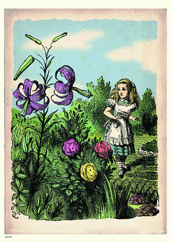 Alice In Wonderland, The Flower Garden, John Tenial Colour Illustration Art Print Poster 50x70cm