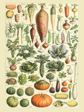 Load image into Gallery viewer, Vegtables Poster Art Print 30x40cm
