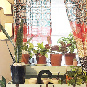 Our Favorite Spaces On Instagram #LushDecorHome