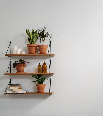 shelving with plant ideas