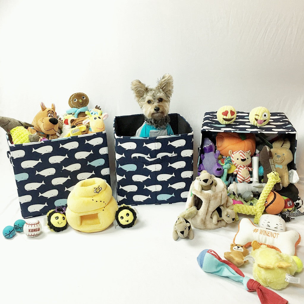 Storage boxes with dog toys, photo by Wicket Lee