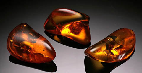 Amber Polished Gemstones