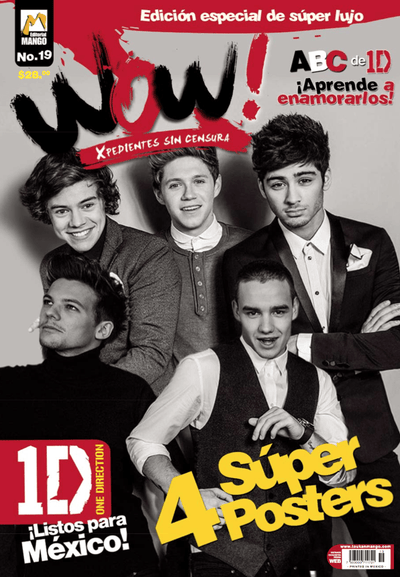 Wow 19 - 1D One Direction - Formato Digital - ToukanMango