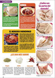 Revista Irresistibles Platillos Especial no. 36 - Pancitas Birrias y Barbacoas - Formato Digital