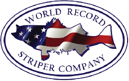 World Record Striper