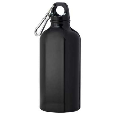 Aluminum Bottle With Carabiner 17 oz.