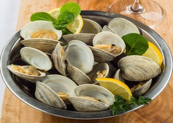 Top Neck Clams - Fresh! - Graham & Rollins | Hampton VA
