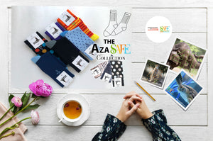 AZA SAFE Partnership