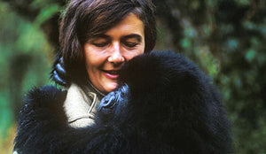 Dian Fossey: the woman who spent her life protecting endangered mountain gorillas