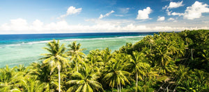 Volunteer in Micronesia