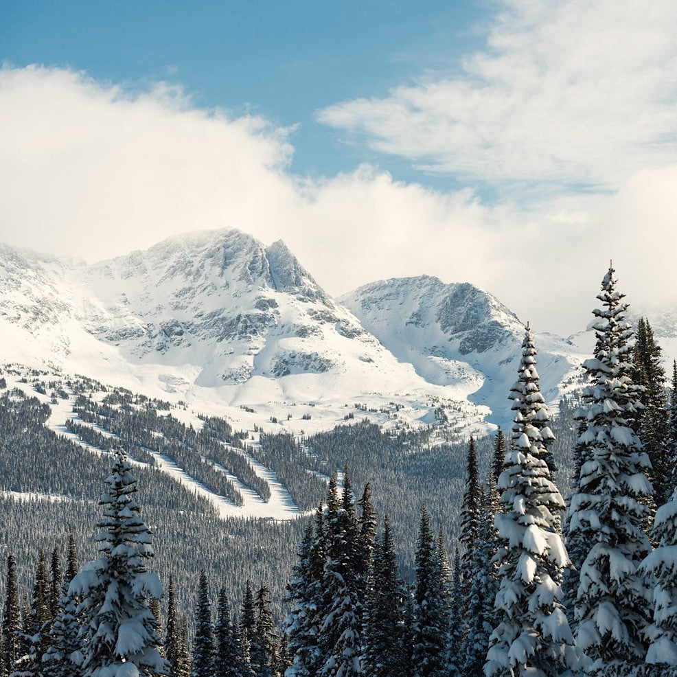 a locals guide to whistler