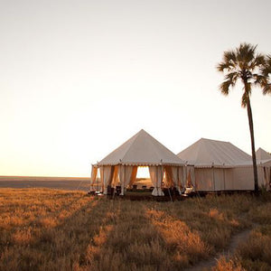 Botswana: The Ultimate Safari
