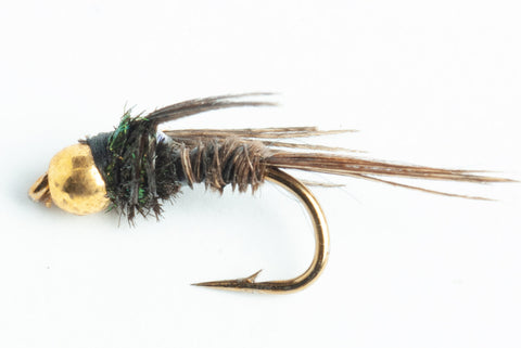 bead head flashback pheasant tail nmph fly