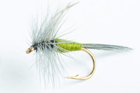 Blue-winged Olive (BWO) Dry Fly, 6-Pack