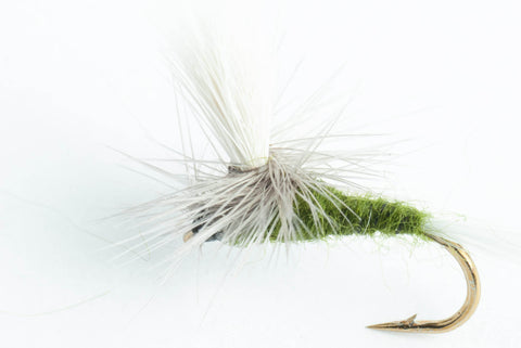 blue-winged Olive (BWO) parachute dry fly