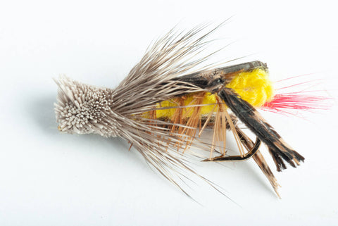 Dave's Hopper Fly