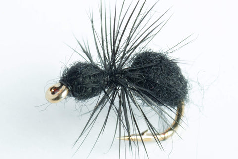 fur ant fly - black