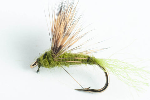 sparkle dun dry fly olive