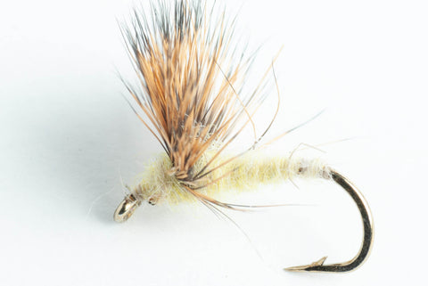 sulfur comparadun dry fly light