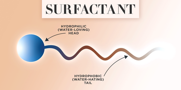 Structure of a surfactant with hydrophilic head and hydrophobic tail