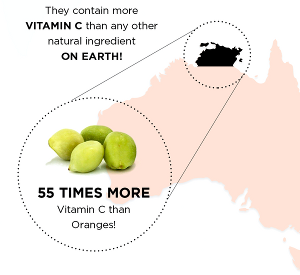 Kakadu Plums 55 times more vitamin C than oranges
