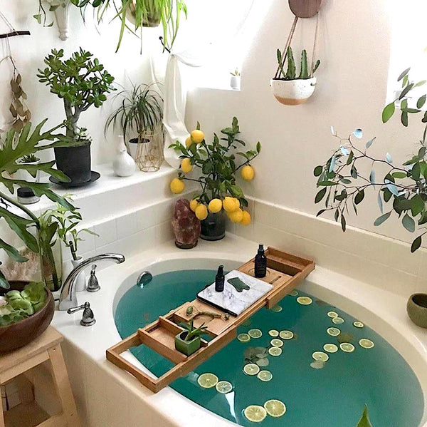 Turquoise bath inspo for plant lovers