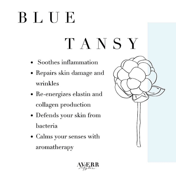 the skin benefits of blue tansy oil in preventative aging skincare products