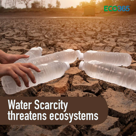 Water Scarcity threatens ecosystems