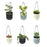 ECO365 Hanging Planter Pots (2White, 2Grey, 2Blue)- Pack of 6