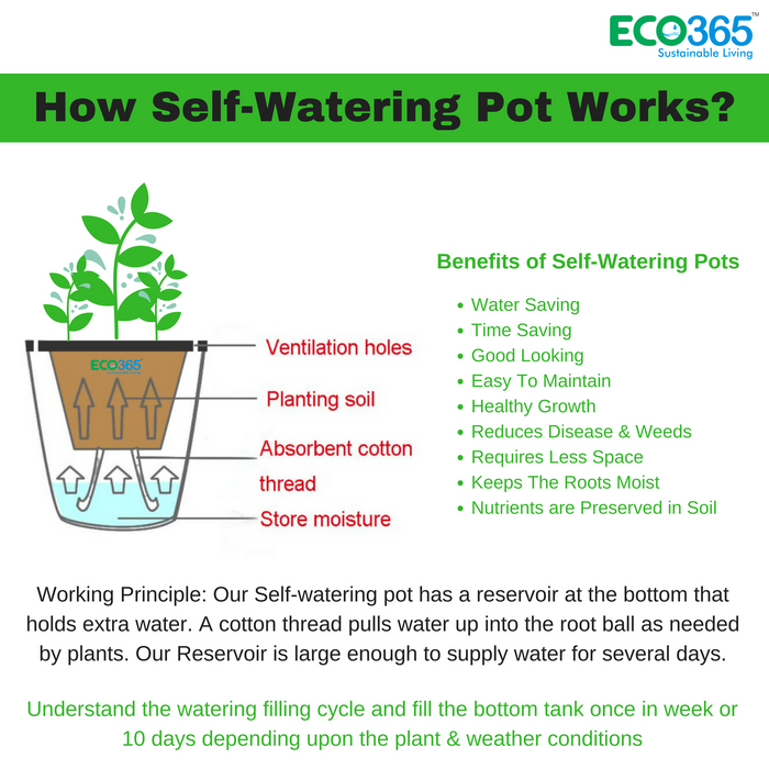 Eco365 Self-Watering Pots Pack of 6