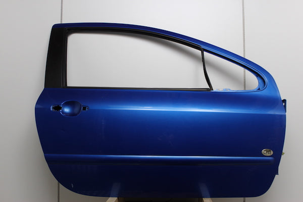 Peugeot 307 Door Front Drivers Side (2004)
