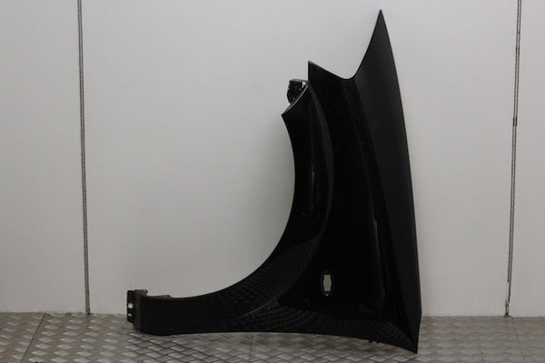 Citroen C3 Wing Passengers Side (2005)