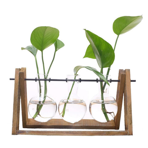 3 Terrarium with Wooden Stand Glass Vase Holder - JfJ
