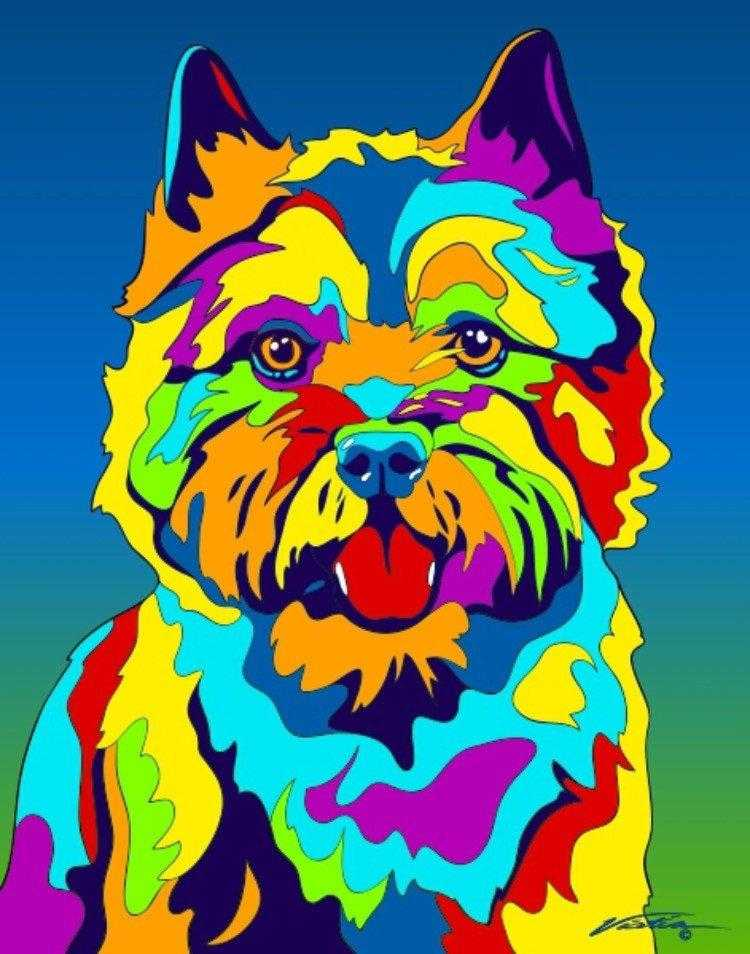 Multi-Color Norwich Terrier Dog Breed Matted Prints & Canvas Giclées - MULTI-COLOR DOG PRINTS